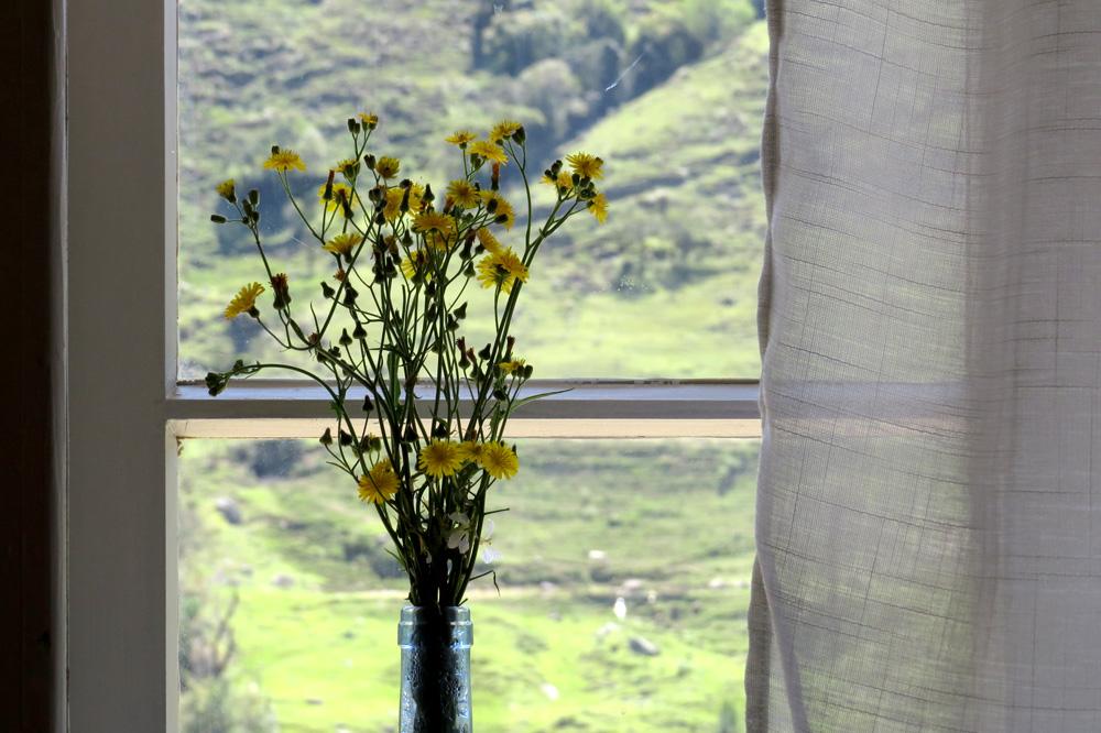 Casa Enxaimel no sitio Pedras Rollantes em Alfredo Wagner, na foto detalhe ambiente do Estudio Nascente.